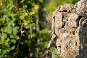 Mur pierre zoomé